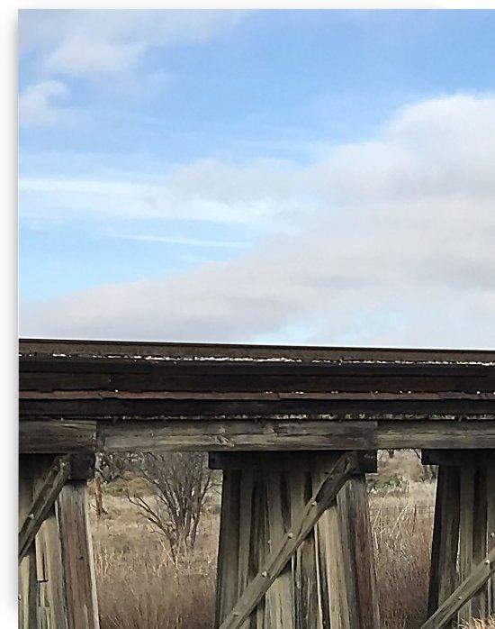 texas railway by Michael Trego