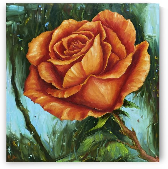 Orange rose by Andrey Polunin