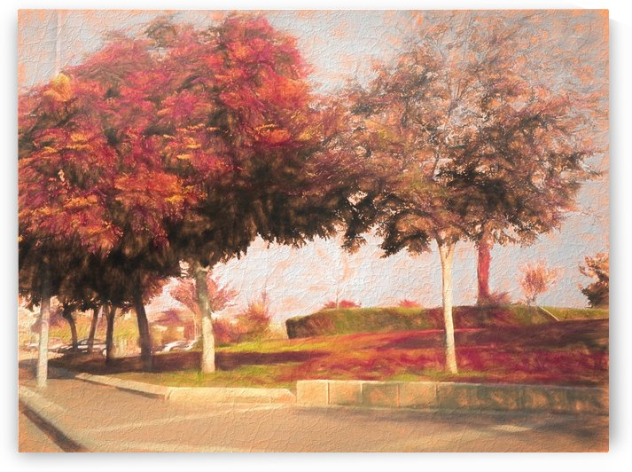 The Raanana Park 9 by raanan ben ari