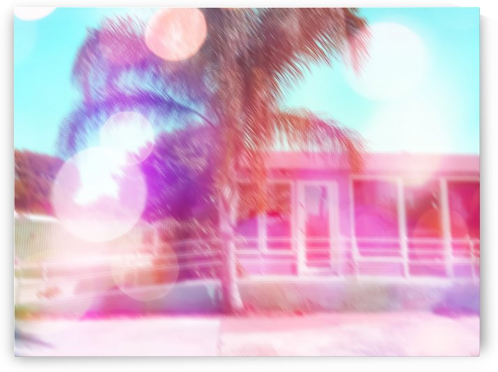 palm tree in the city with colorful bokeh light abstract  by TimmyLA