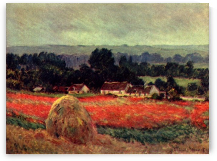 The poppy Blumenfeld (The barn) by Monet by Monet