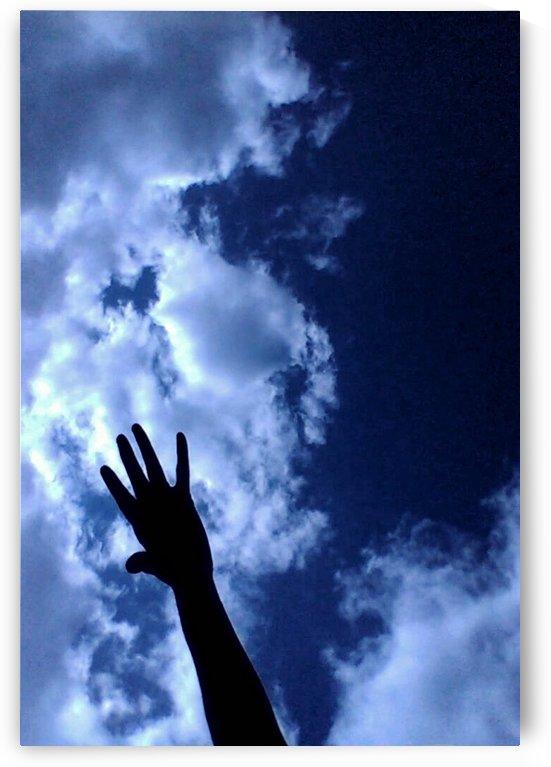 The reach by Brandice