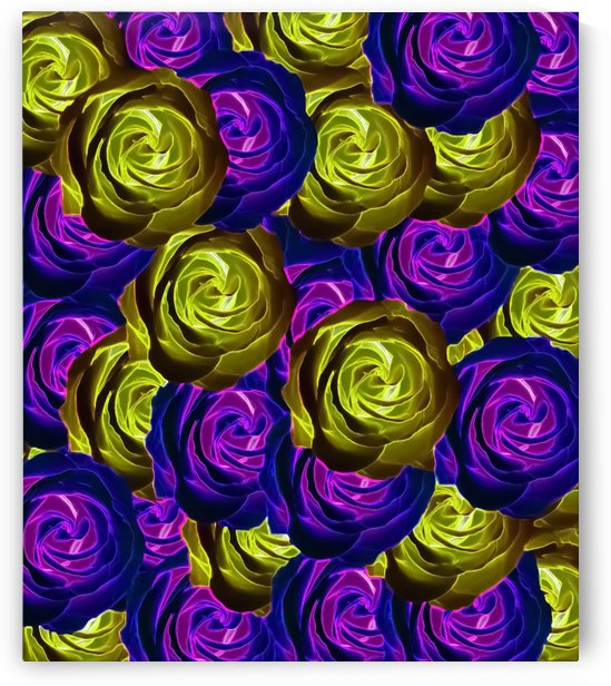 blooming rose texture pattern abstract background in pink purple yellow by TimmyLA
