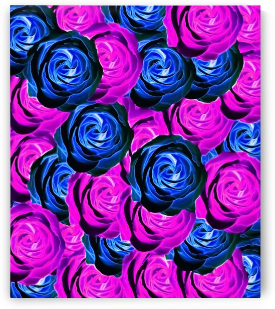 blooming rose texture pattern abstract background in pink and blue by TimmyLA