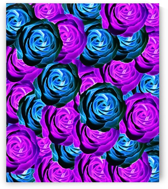 blooming rose texture pattern abstract background in purple and blue by TimmyLA