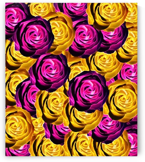 blooming rose texture pattern abstract background in pink and yellow by TimmyLA