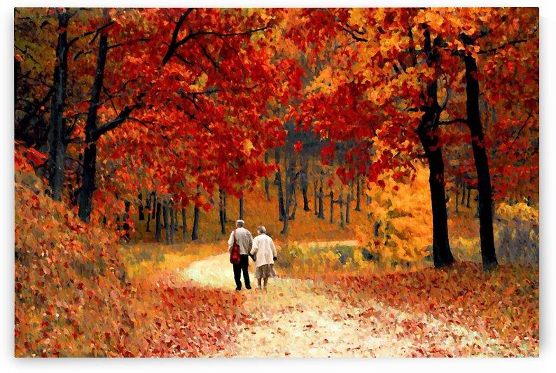 An Autumn Walk  by David Dehner