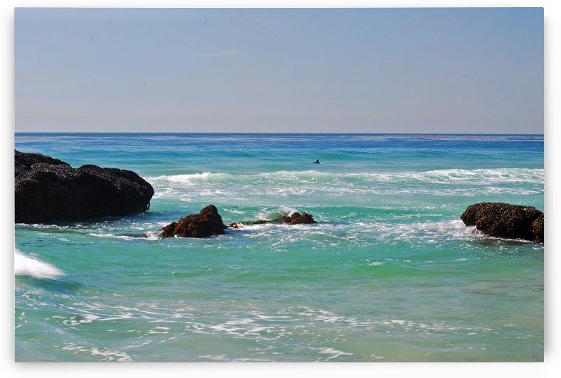 Ocean by Dana Point CA by Darryl Green