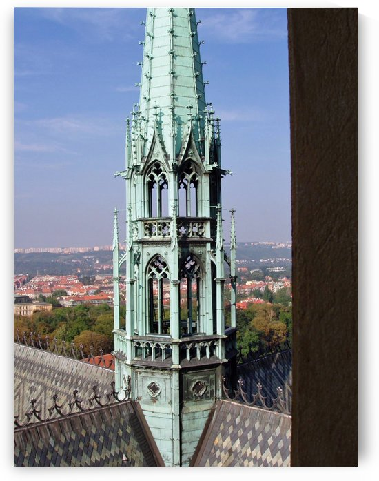 Atop The cathedral in Prague by Darryl Green