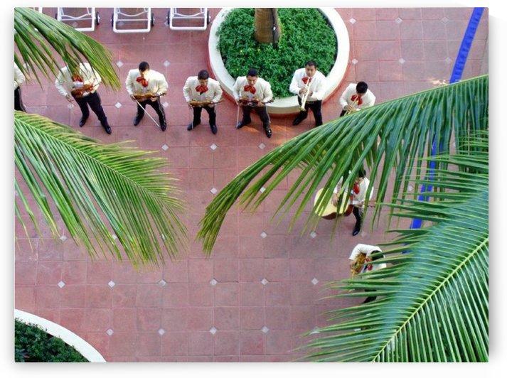 Mexican Serenade by Darryl Green