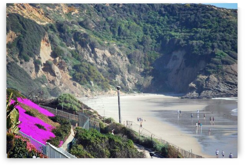 Secluded Cali fornia Beach by Darryl Green