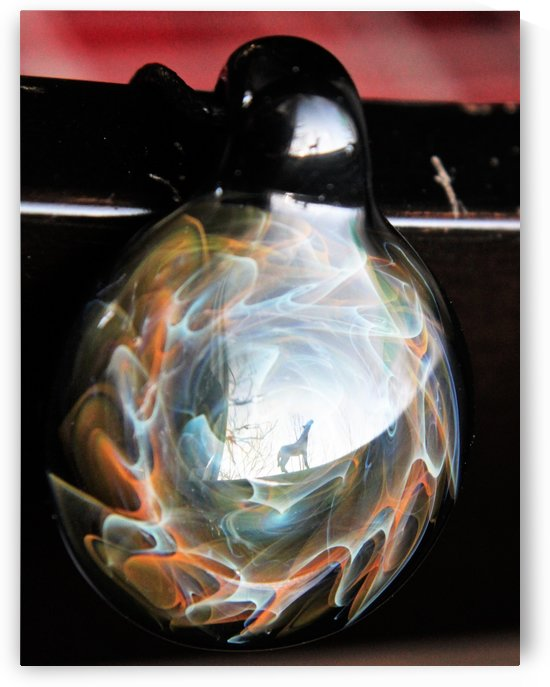 ReflectionInGlassF002 by DragonFire Glass
