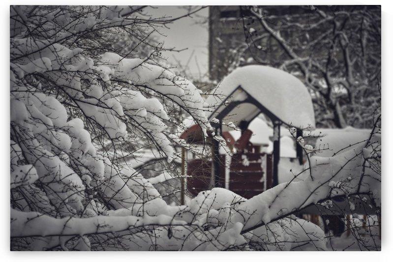 Red Playground Under Snow by Ann Romanenko