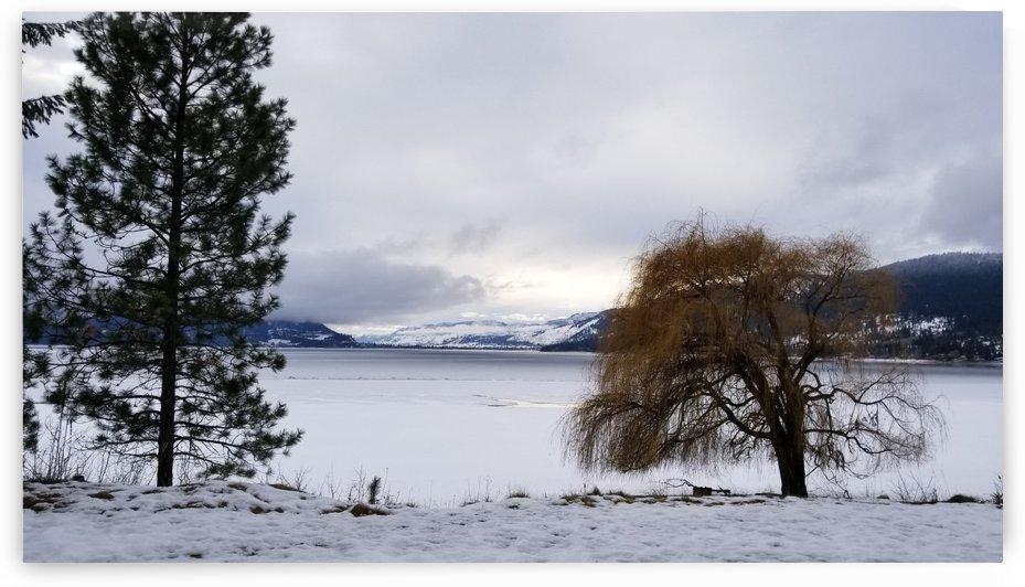 Snowy Shuswap Lake by Mia Clement