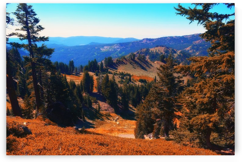 Lassen Volcanic National Park by Frank Wilson