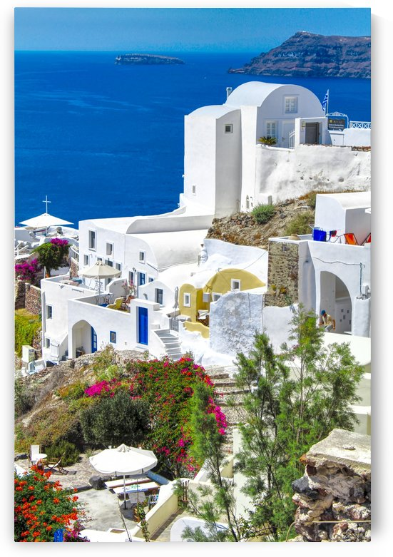Colourful Flowers and houses at Santorini Island by Bentivoglio