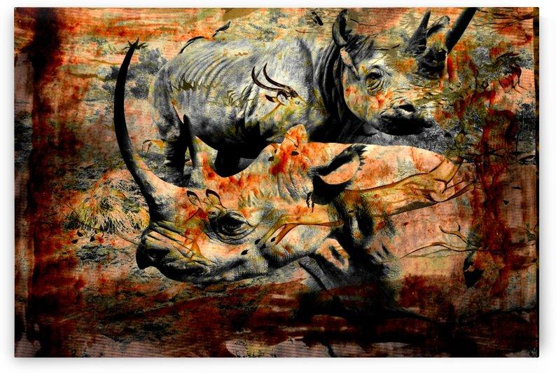 Rhino Impalas Collage by D de G