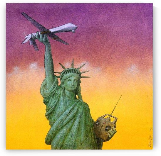 Drone by Pawel Kuczynski