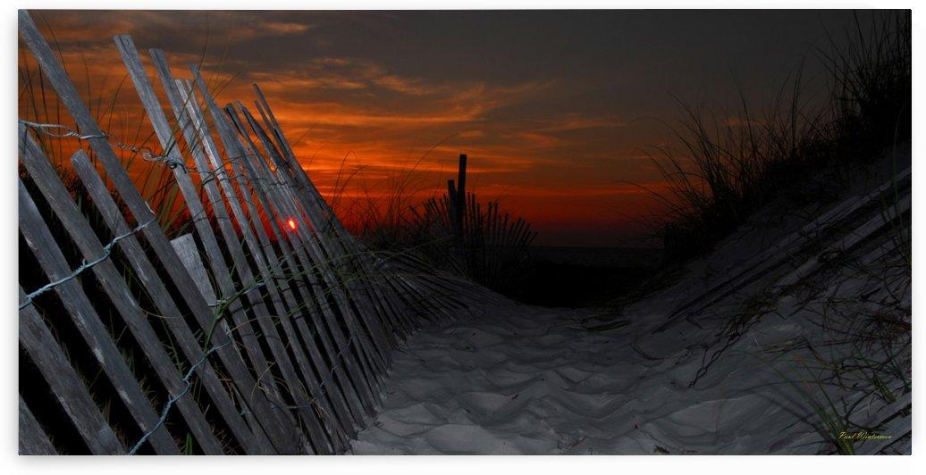 L F 0053- Hurricane Fence by Paul Winterman