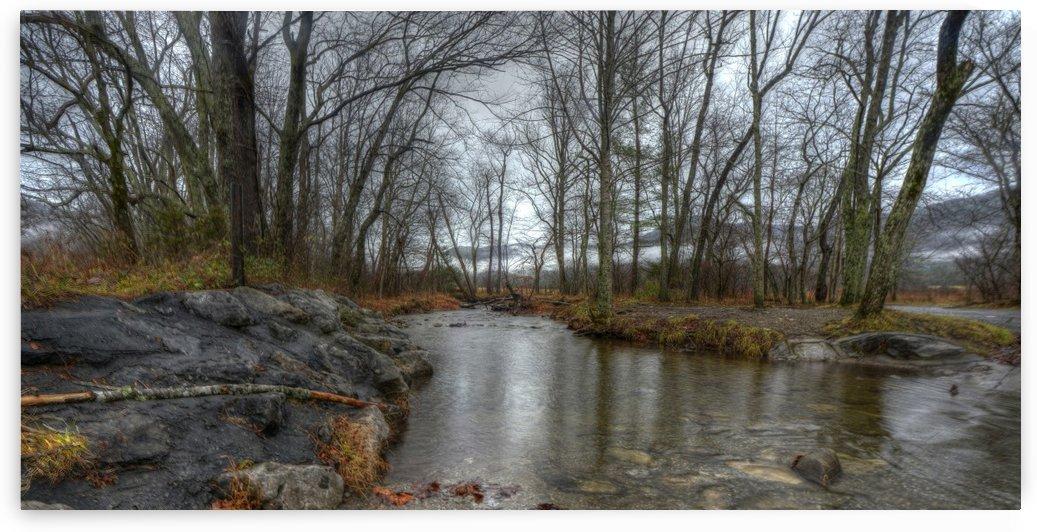 1-2 Sparks Road Creek by Paul Winterman