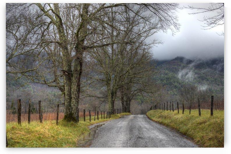 22_mountain Fog by Paul Winterman