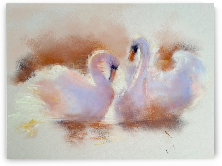 Swan Love by Roniyana Lane