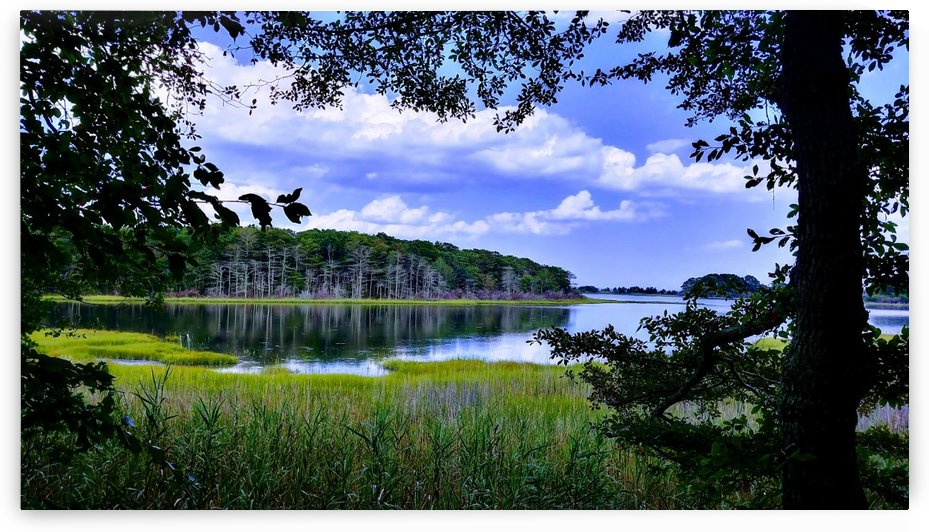 Salt Marsh Tranquility by Gilbert Rod