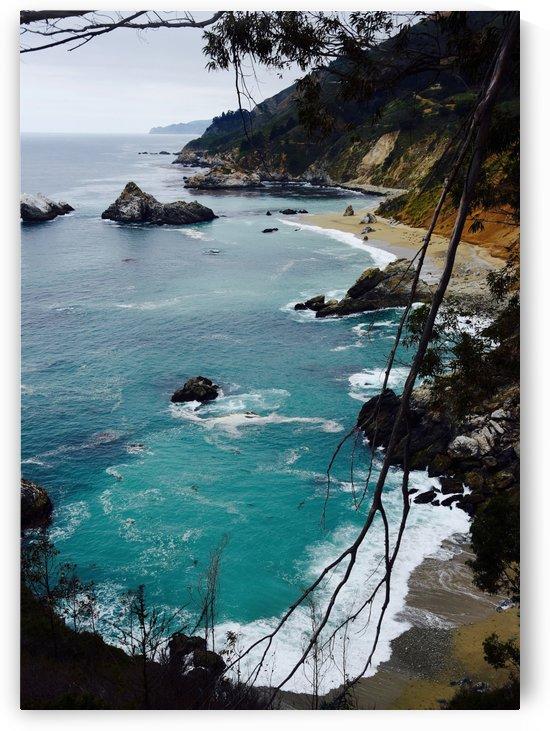 Big Sur  by Robin Buckley