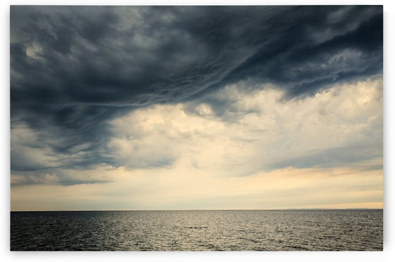 Tiny ducks under big cloud by Katharine Asals Photography