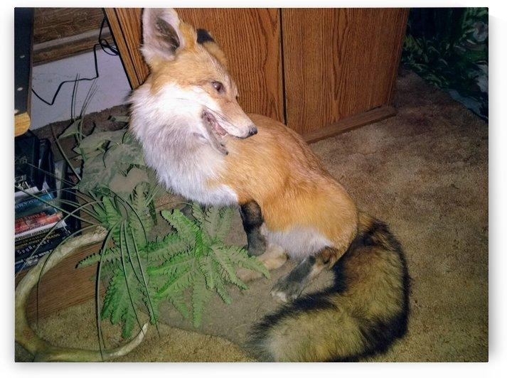Stuffed Fox by pyro