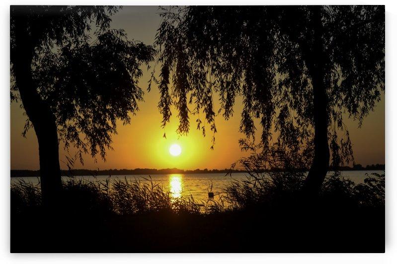 Orange Sunset by Ann Romanenko