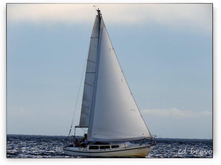 yacht by Ed Bravo