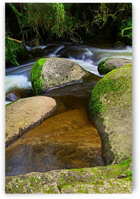 Clear Stream with Green Mossy Rocks B020300_1120065 by Maxwell Jordan