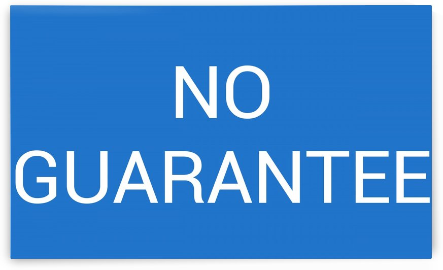 NO GUARANTEE by lenie blue