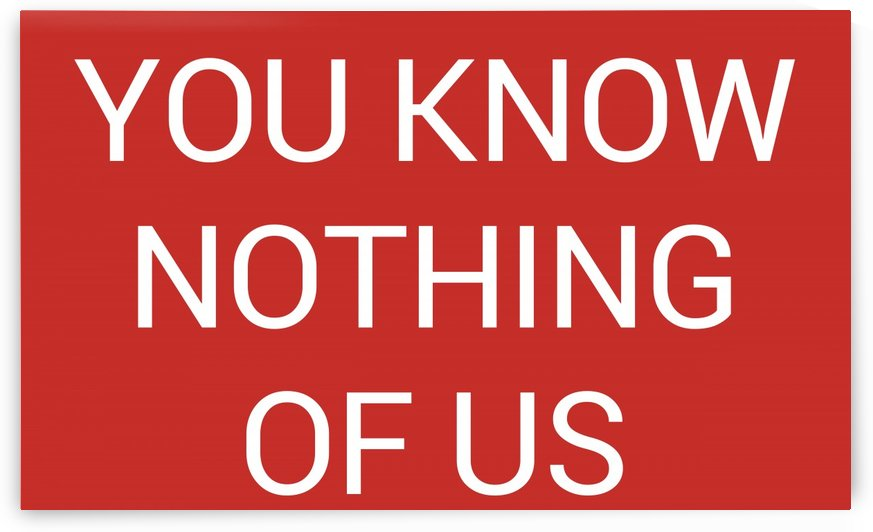 YOU KNOW NOTHING OF US by lenie blue