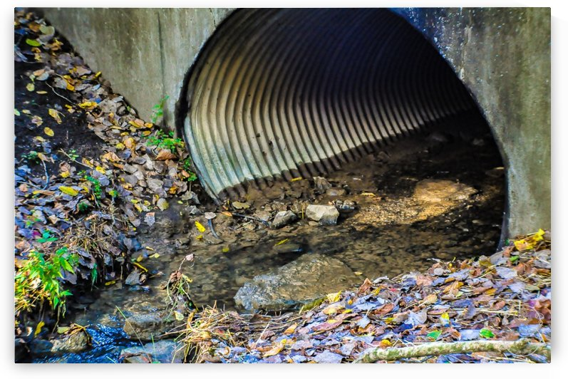 Secret Tunnel by Amber Handy