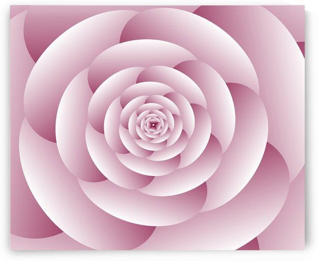Abstract Flower Spiral Artwork by Rizwana Khan