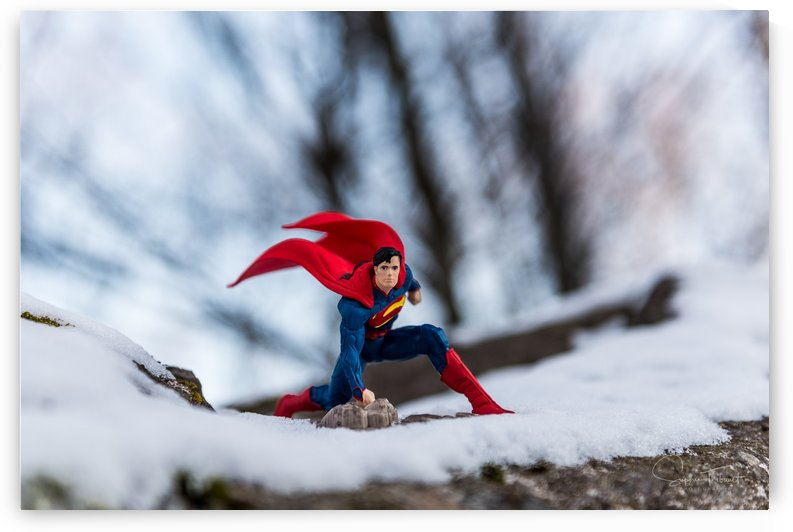 Frosty Superman by Sophie Thibault