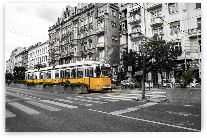 Tramway jaune by Sophie Thibault