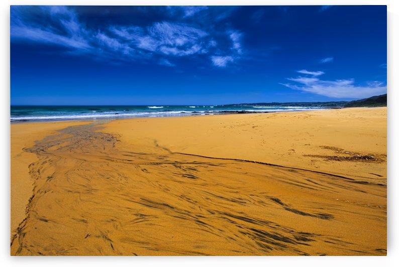 Sandy Stream to the Sea B010200_1115027 by Maxwell Jordan