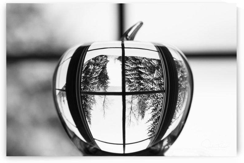 L'hiver est dans la pomme by Sophie Thibault