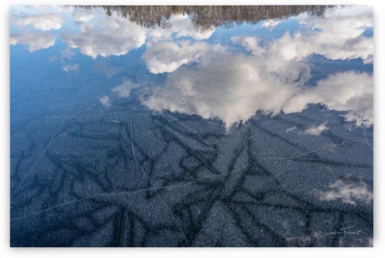 Art de glace by Sophie Thibault