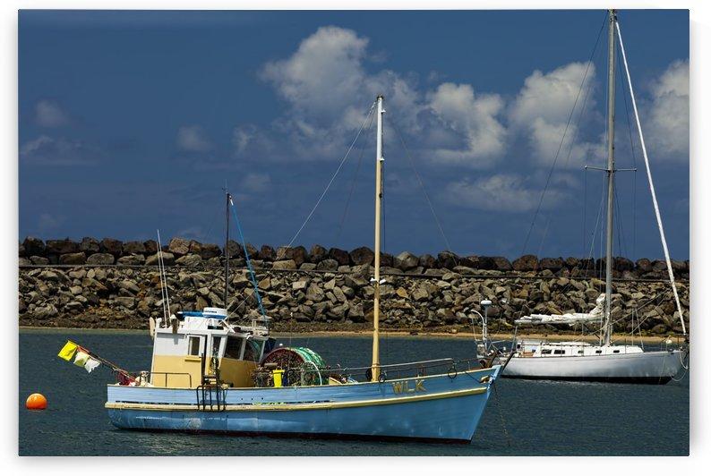 Blue Boat at Apollo Bay 011142609 by Maxwell Jordan