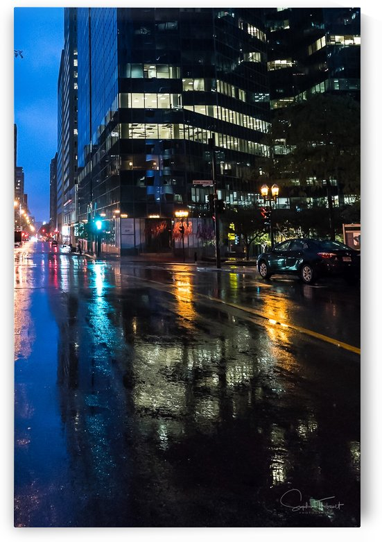 City lights by Sophie Thibault