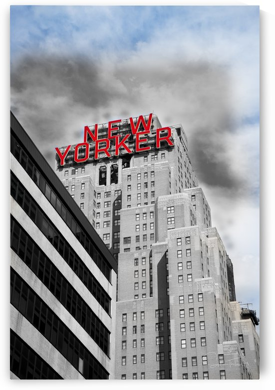 NewYorker by Sophie Thibault