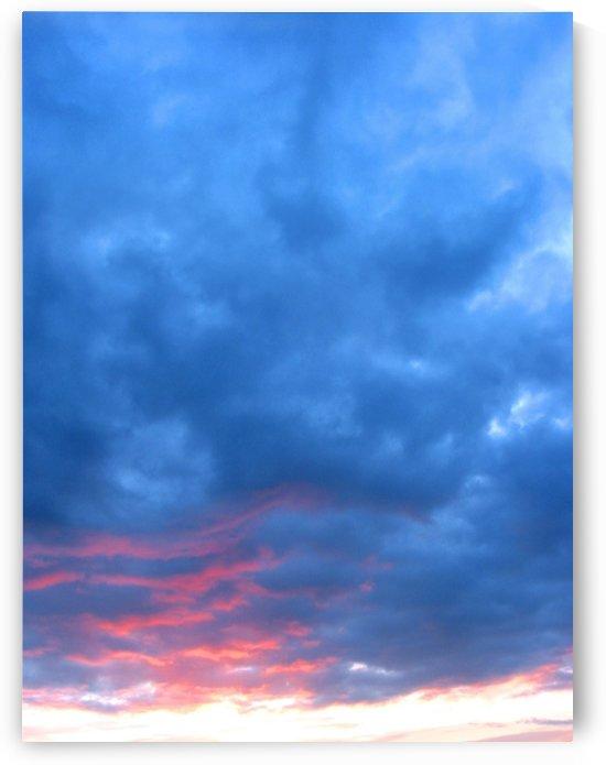 Moody Blues by Fiona Heap