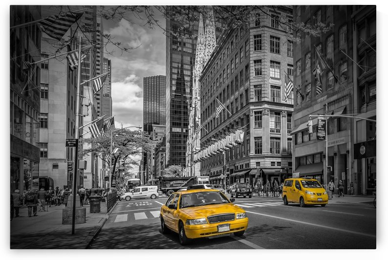 MANHATTAN 5th Avenue by Melanie Viola