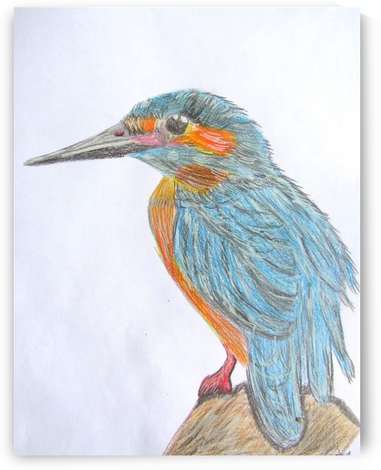 Kingfisher by Sarah Flanagan