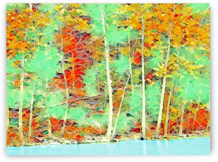 Colorful Shoreline by Nina
