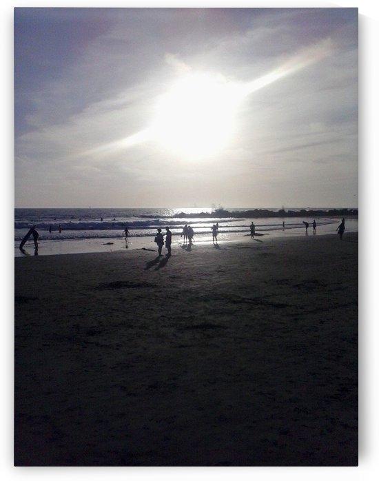 Coronado Island, San Diego, Ca by D - Mitch The Poet